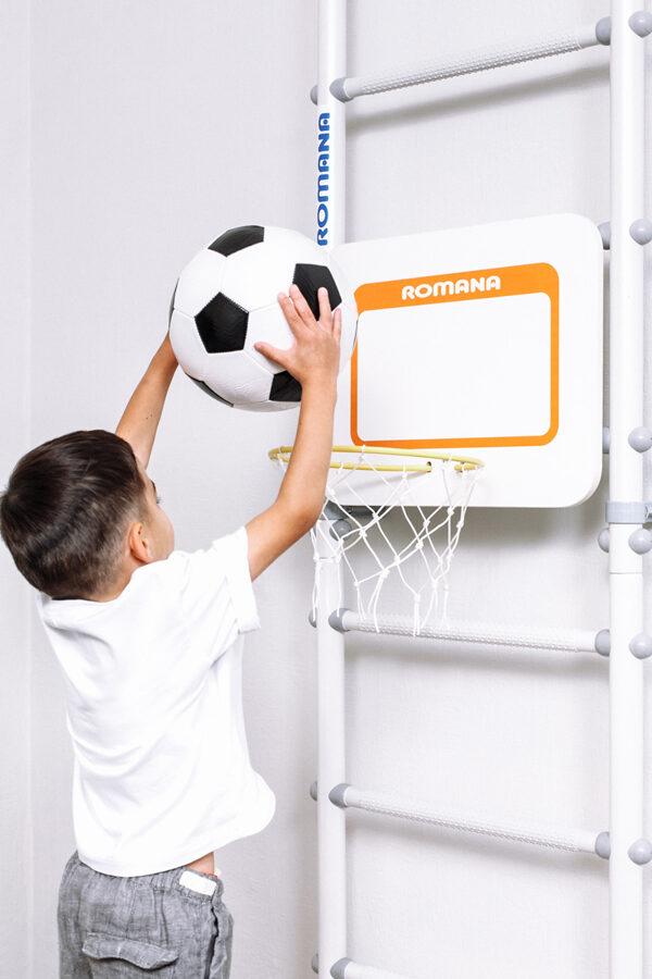 Basketbola grozs priekš zviedru sienas